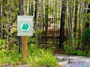 Adawehi Stewardship Forest