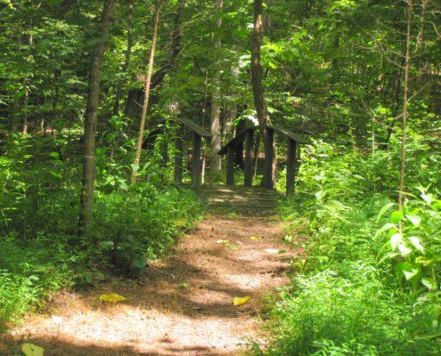 Adawehi Hiking Trails